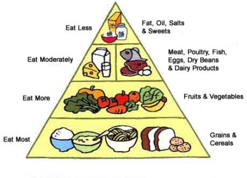 The auld Food Pyramid. Eat mostly Carbs. What we were brought up to believe.