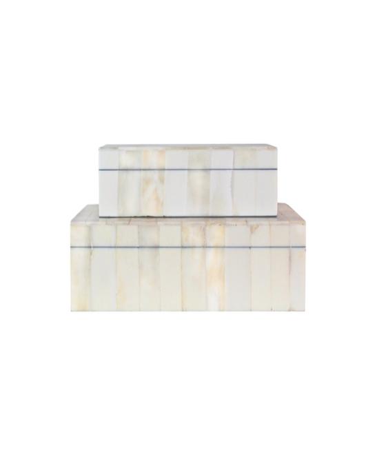 Bone Clad Storage Box