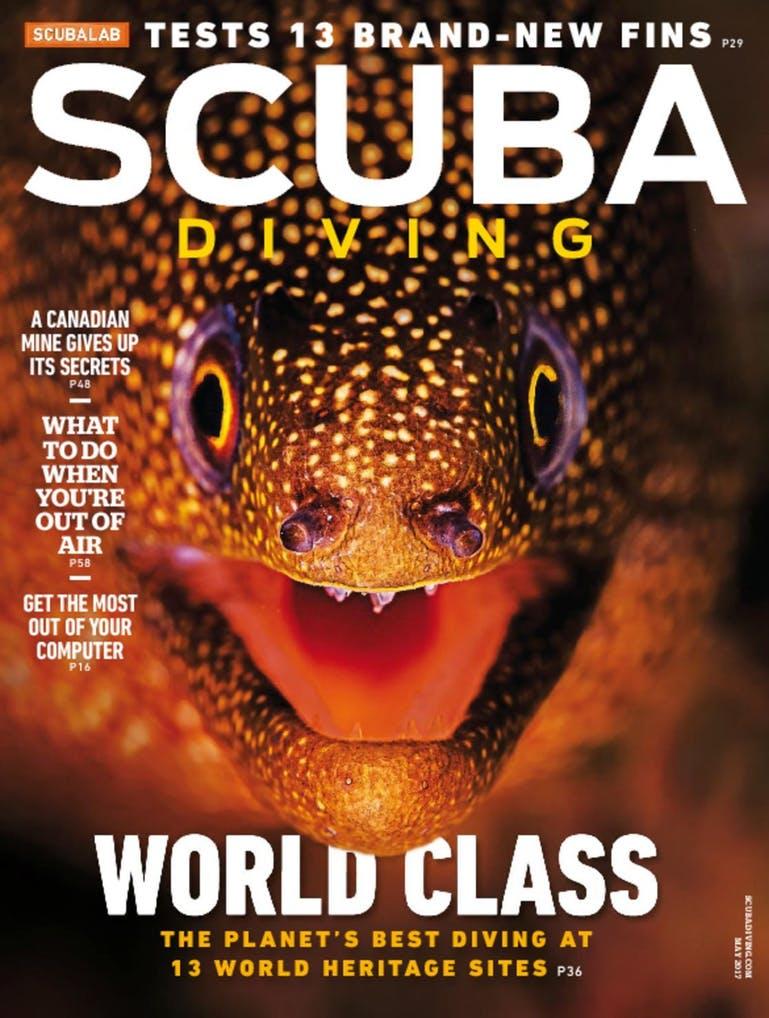Scuba Diving Cover
