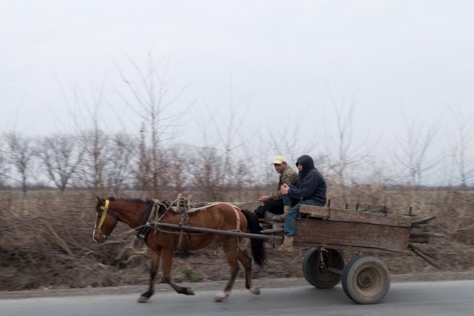Horse and carriage in Sanavardo