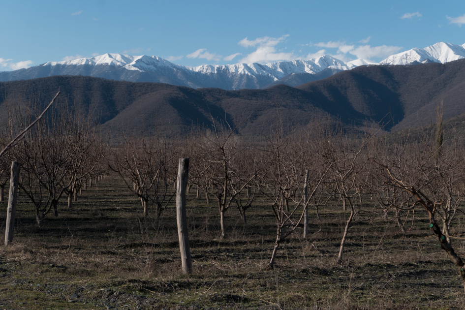 Spring has arrived but the Caucasus mountains are still covered in snow.