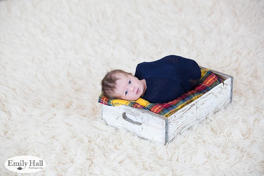 Salem Newborn Photographer-7629.jpg