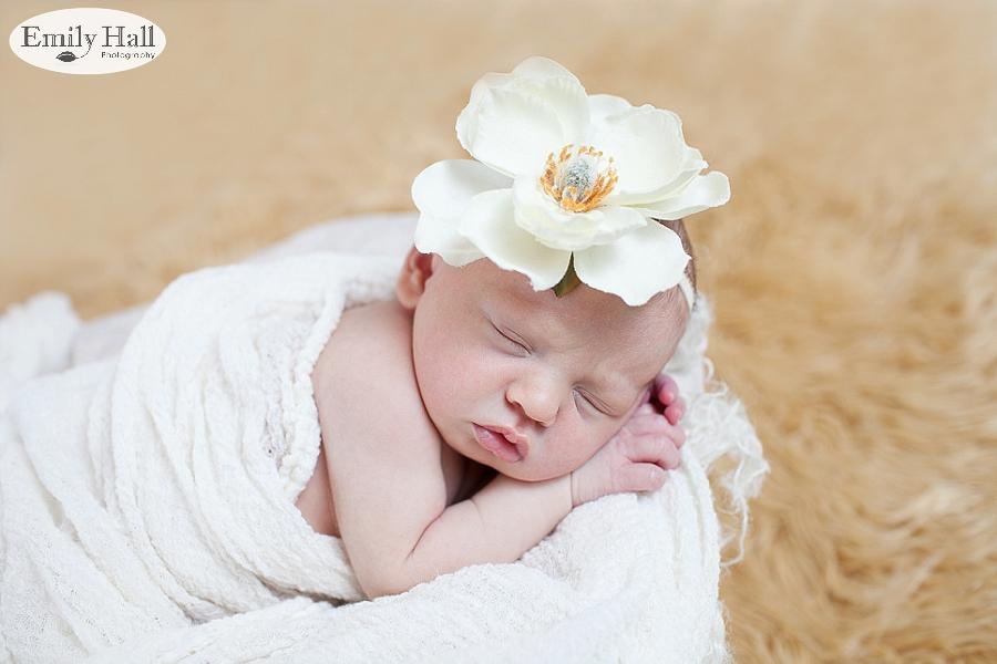 Salem Newborn Photographer-2391.jpg