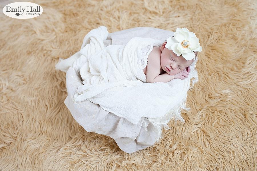 Salem Newborn Photographer-2394.jpg