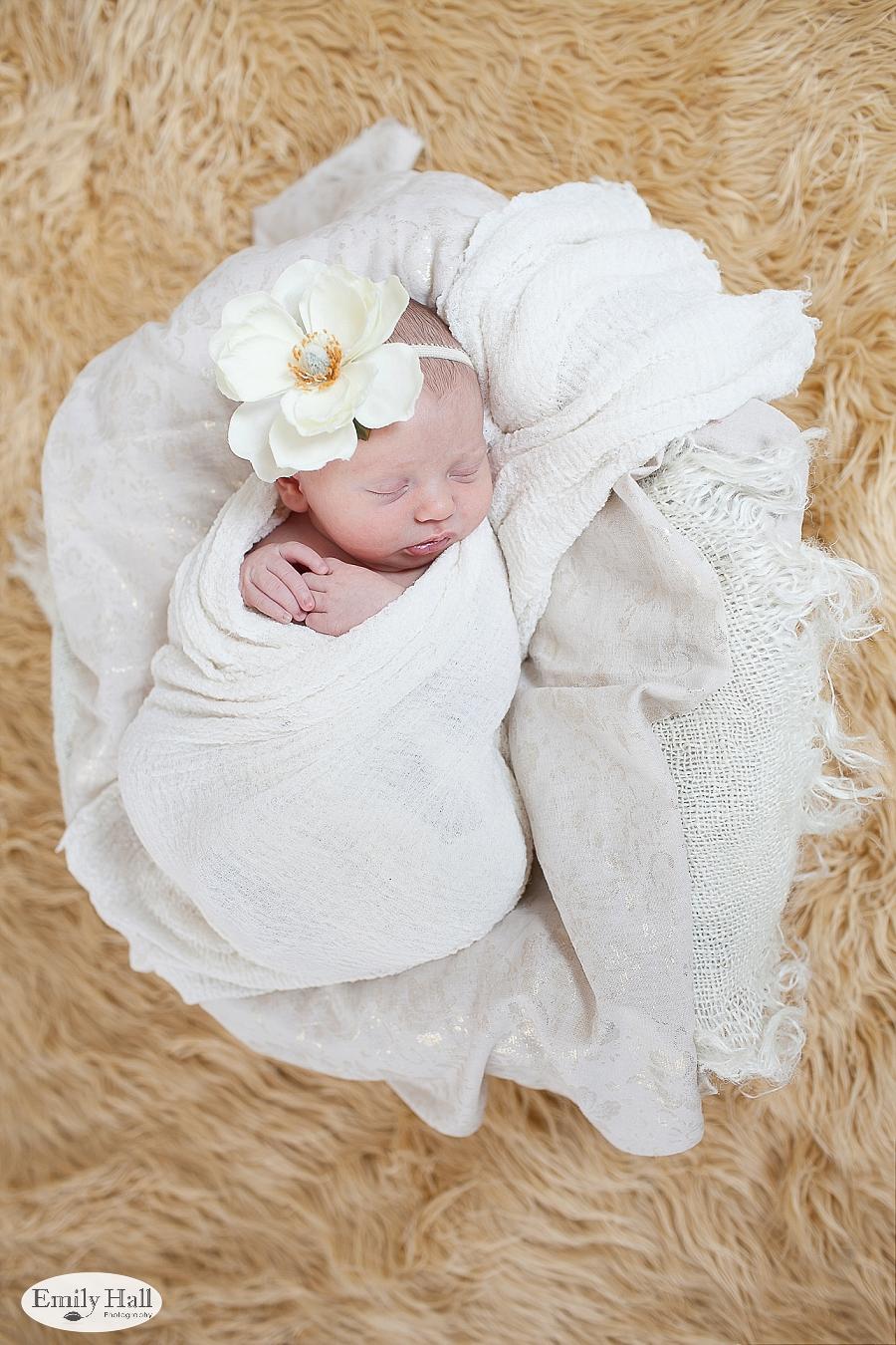 Salem Newborn Photographer-2382.jpg