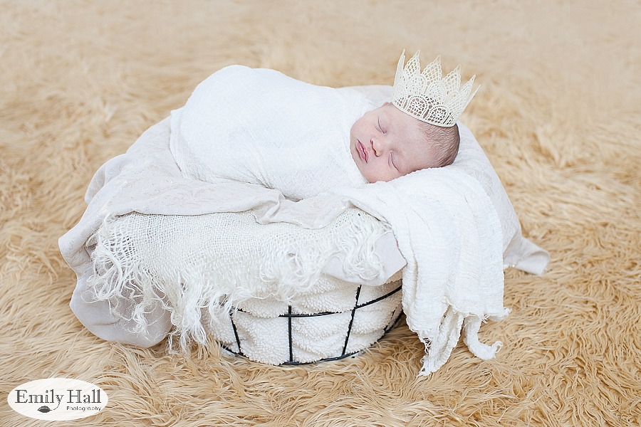Salem Newborn Photographer-2376.jpg
