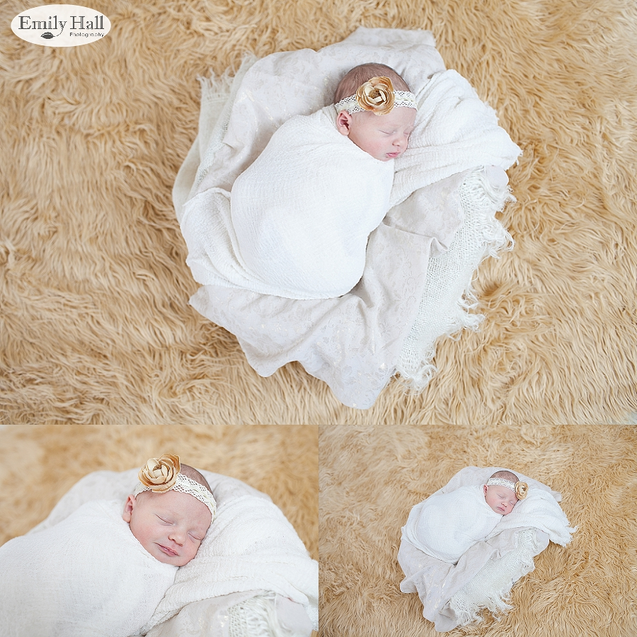 Salem Newborn Photographer-2368.jpg