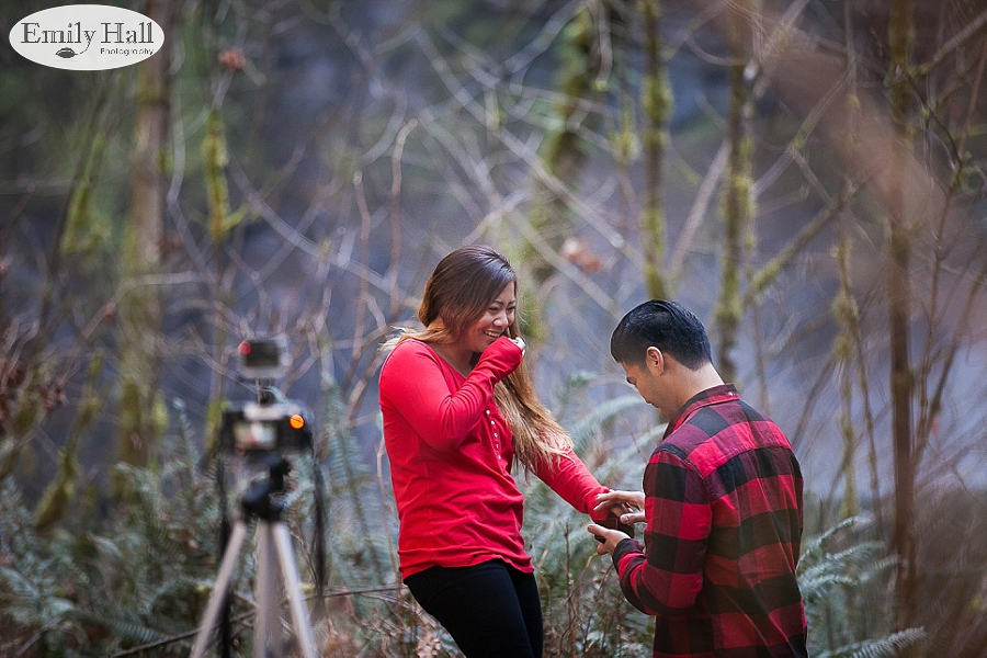 Willamette Valley Proposal Photographer - Silver Falls-20.jpg