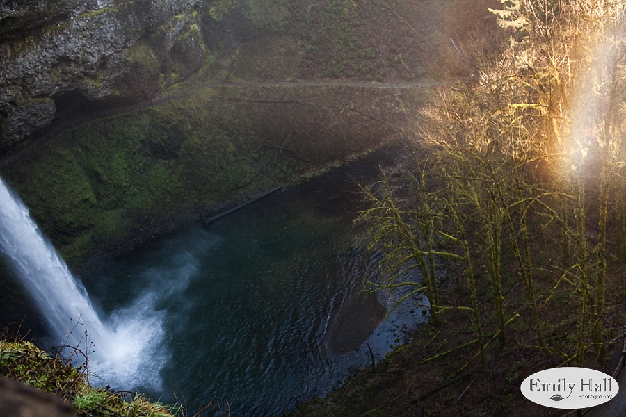 Willamette Valley Proposal Photographer - Silver Falls-1.jpg