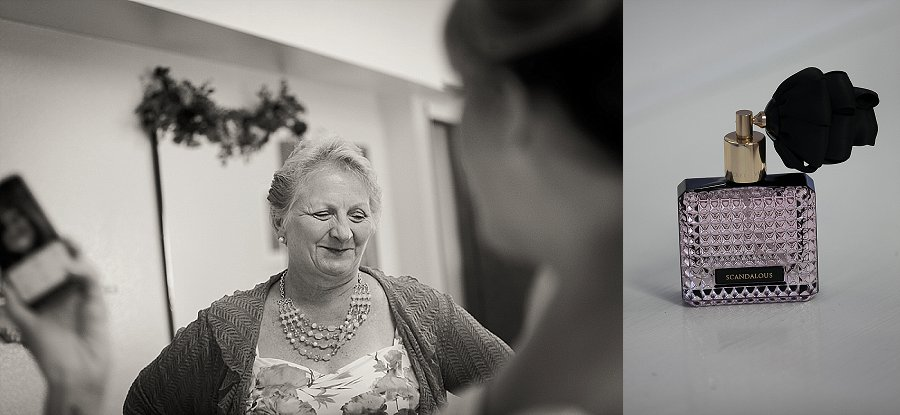 Wooden Shoe Tulip Farm Wedding-17.jpg