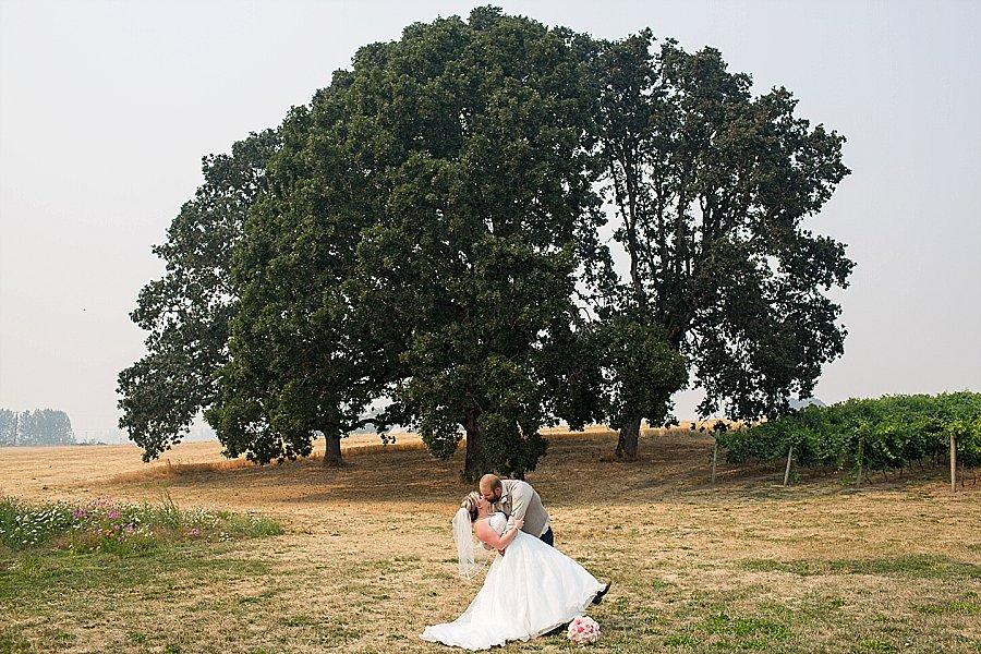 Wooden Shoe Tulip Farm Wedding-255.jpg
