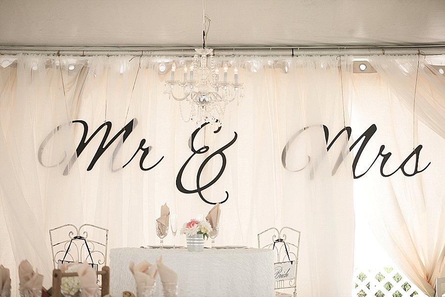 Wooden Shoe Tulip Farm Wedding-319.jpg