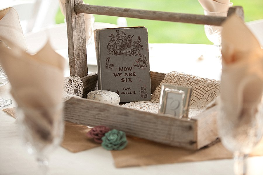 Wooden Shoe Tulip Farm Wedding-331.jpg