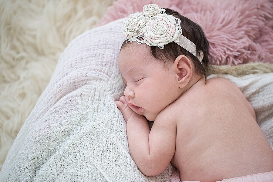 Albany Newborn Photographer - Emily Hall Photography-2038.jpg