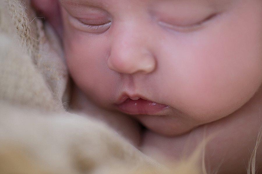 Albany Newborn Photographer - Emily Hall Photography-2100.jpg