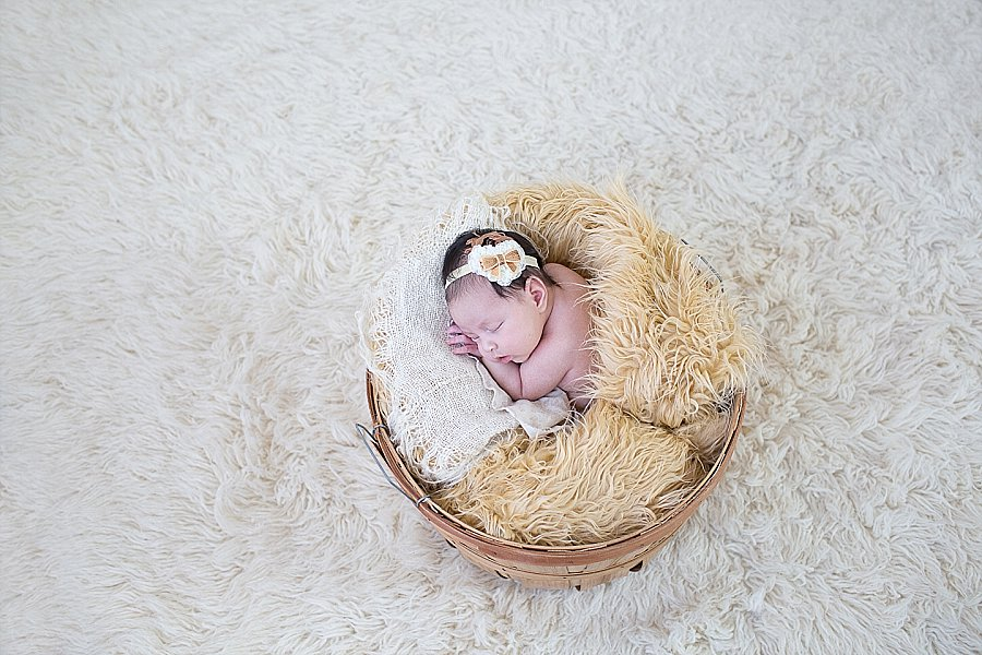 Albany Newborn Photographer - Emily Hall Photography-2131.jpg