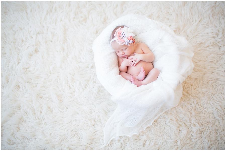 Albany  Newborn Photographer-10.jpg