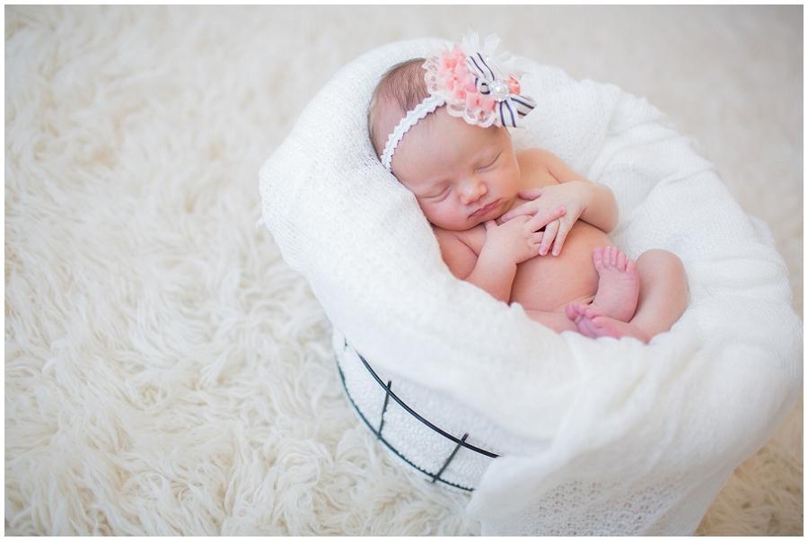Albany  Newborn Photographer-11.jpg