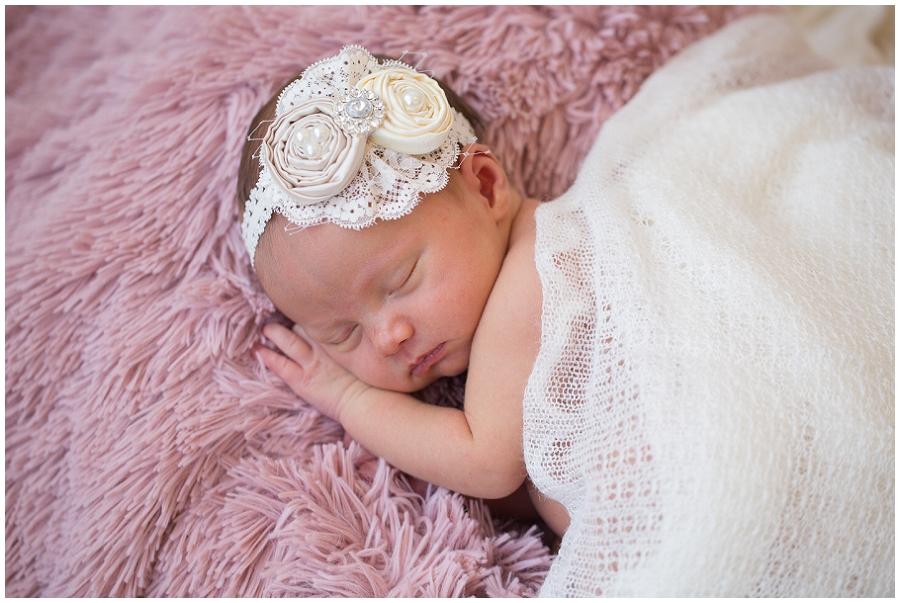 Albany  Newborn Photographer-15.jpg