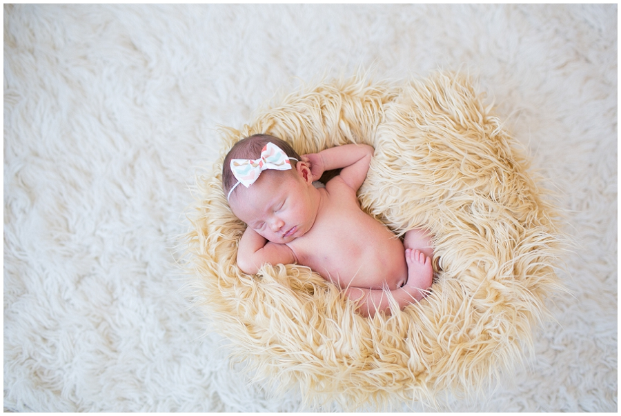 Albany  Newborn Photographer-27.jpg