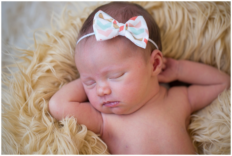 Albany  Newborn Photographer-26.jpg