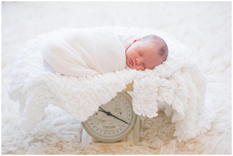 Albany  Newborn Photographer-8.jpg