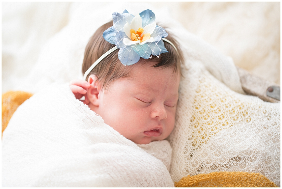 Albany Newborn Photographer-3007.jpg