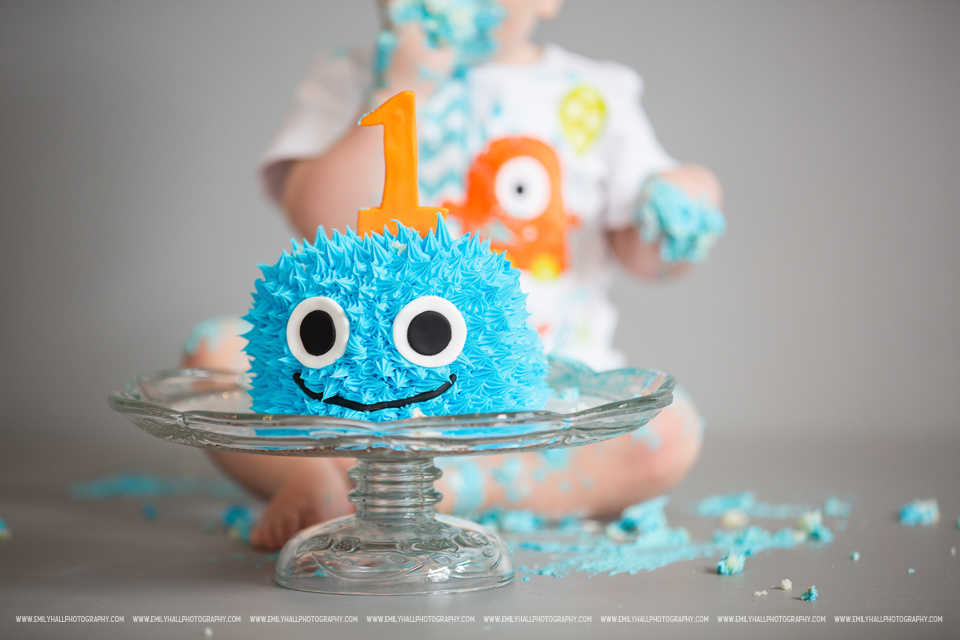 Salem Oregon Cake Smash Photographer