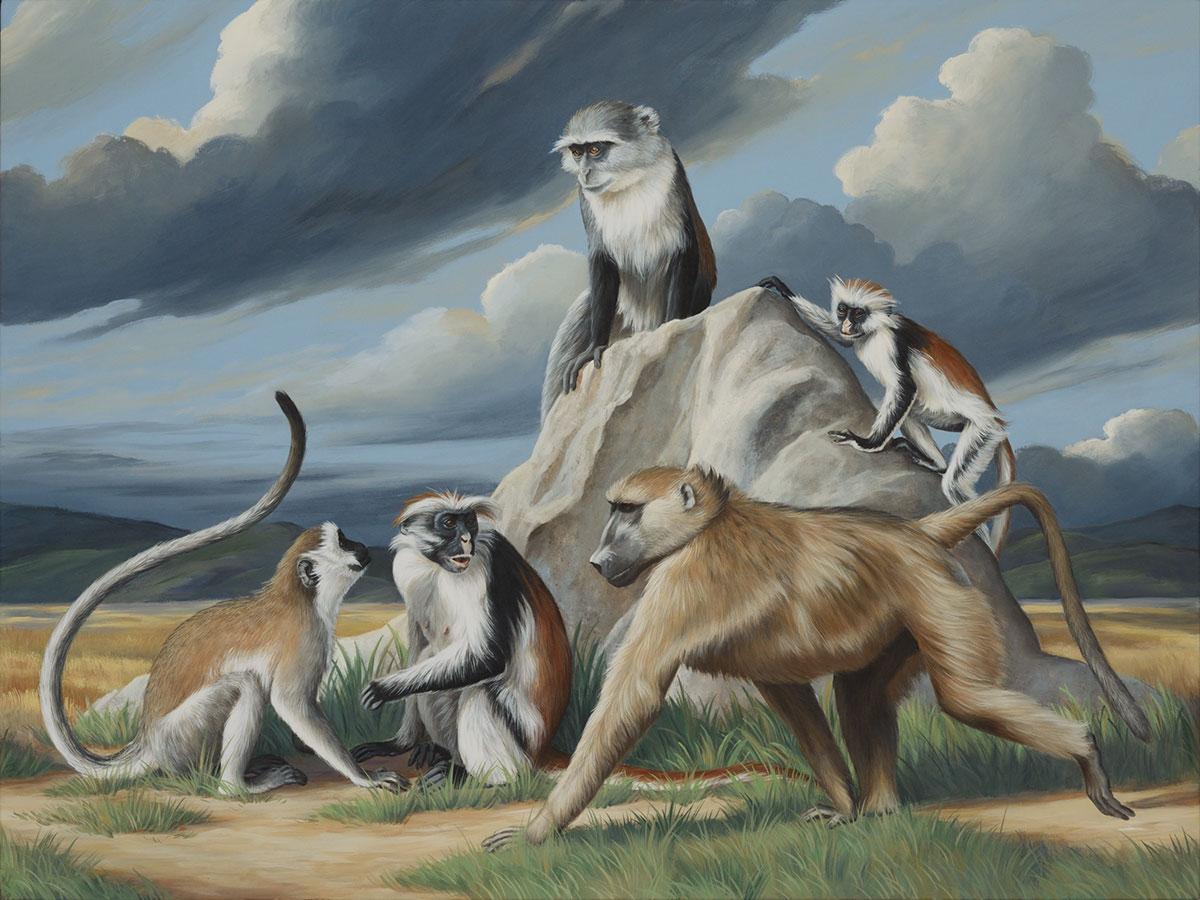 East African Monkeys (right)