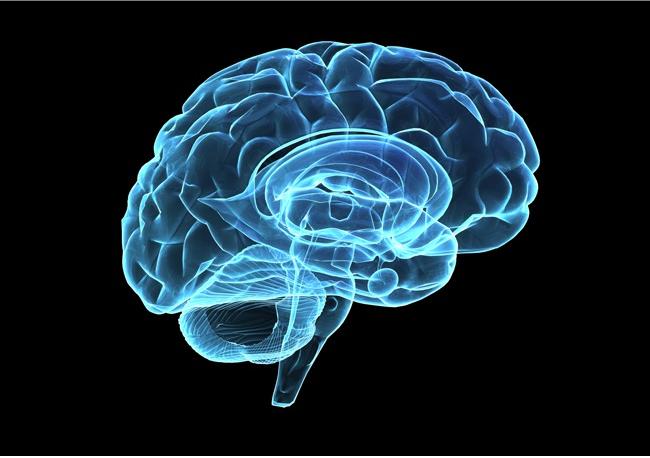 Neurology — 🍎 Health & Lifestyle🍃 — I Love Nature