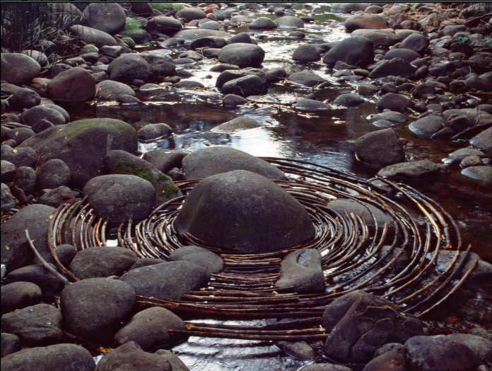 Curved sticks surround a river boulder in Woody Creek, Colo. (Sept. 16, 2006)