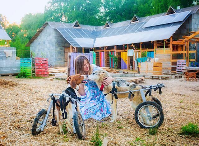Photo by   Daria Pushkareva