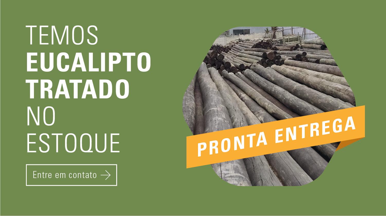 AEUCALIPTO - WEBSITE - BANNERS 2-09.jpg