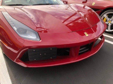 Ferrari with Camisasca Tow Hook Mount