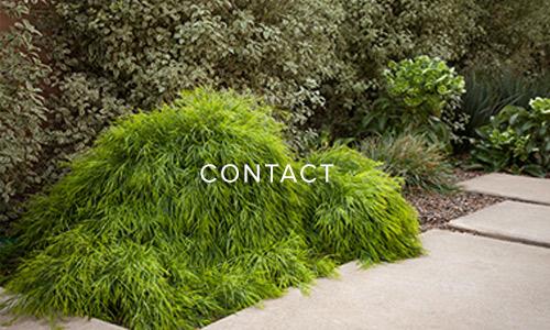 site-ecotones-contact.jpg