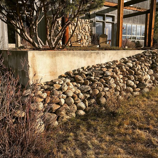 Concrete can be beautiful. So is field cobble dry stacked. How about a combo of both? Thinking outside the box for this wall.  #20yearsanniversary  #landscapedesign  #ecotoneslandscapes