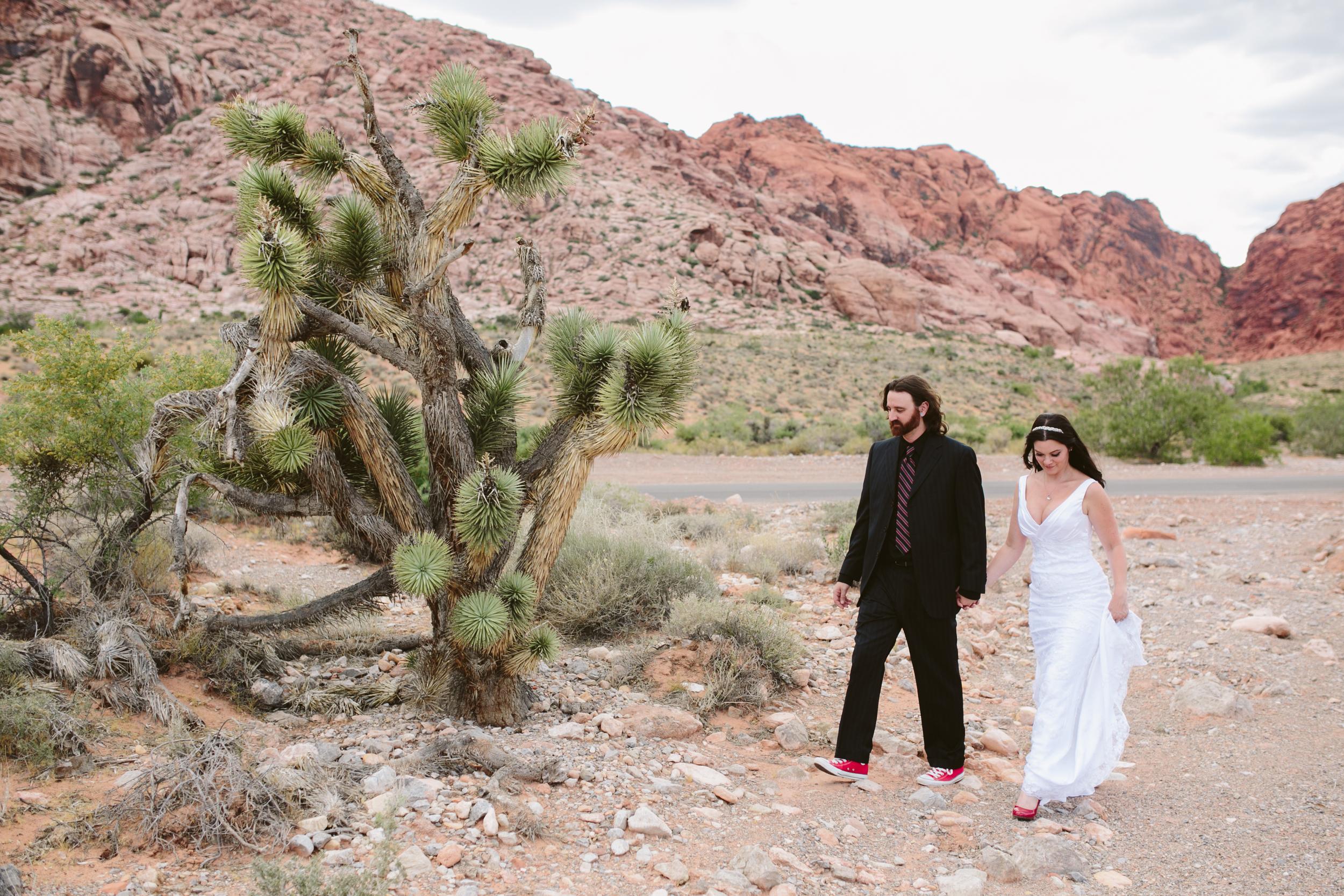 Las Vegas Wedding Photos  Nevada Photographer (34).jpg