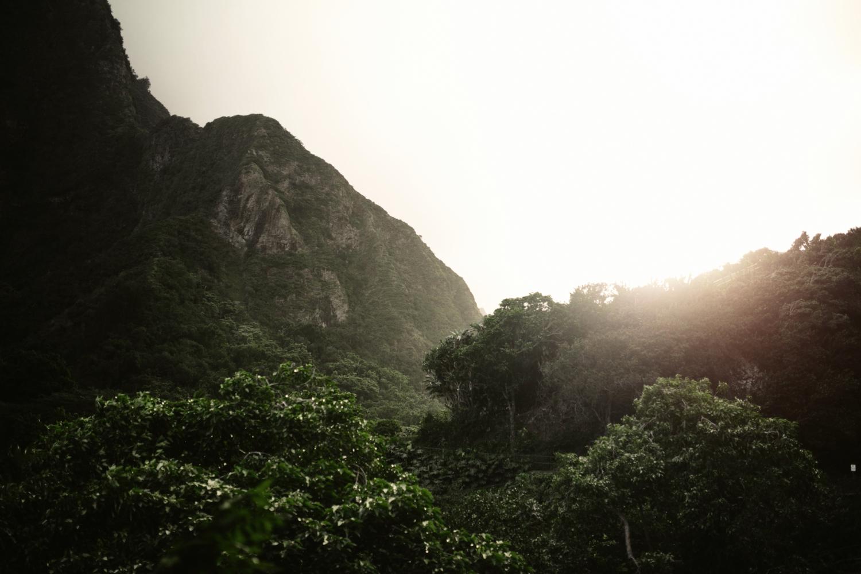 Maui Hawaii- Grace and Jaden Photography (9).jpg