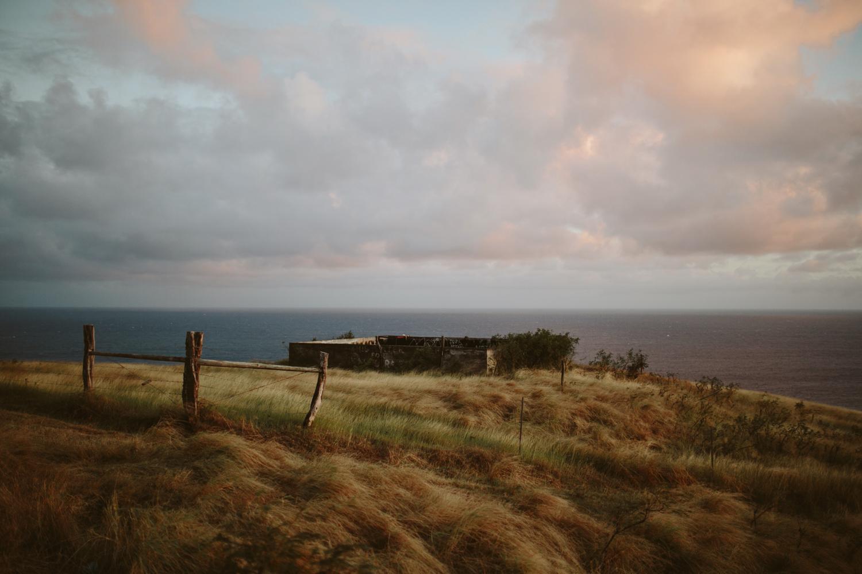 Maui Hawaii- Grace and Jaden Photography (26).jpg