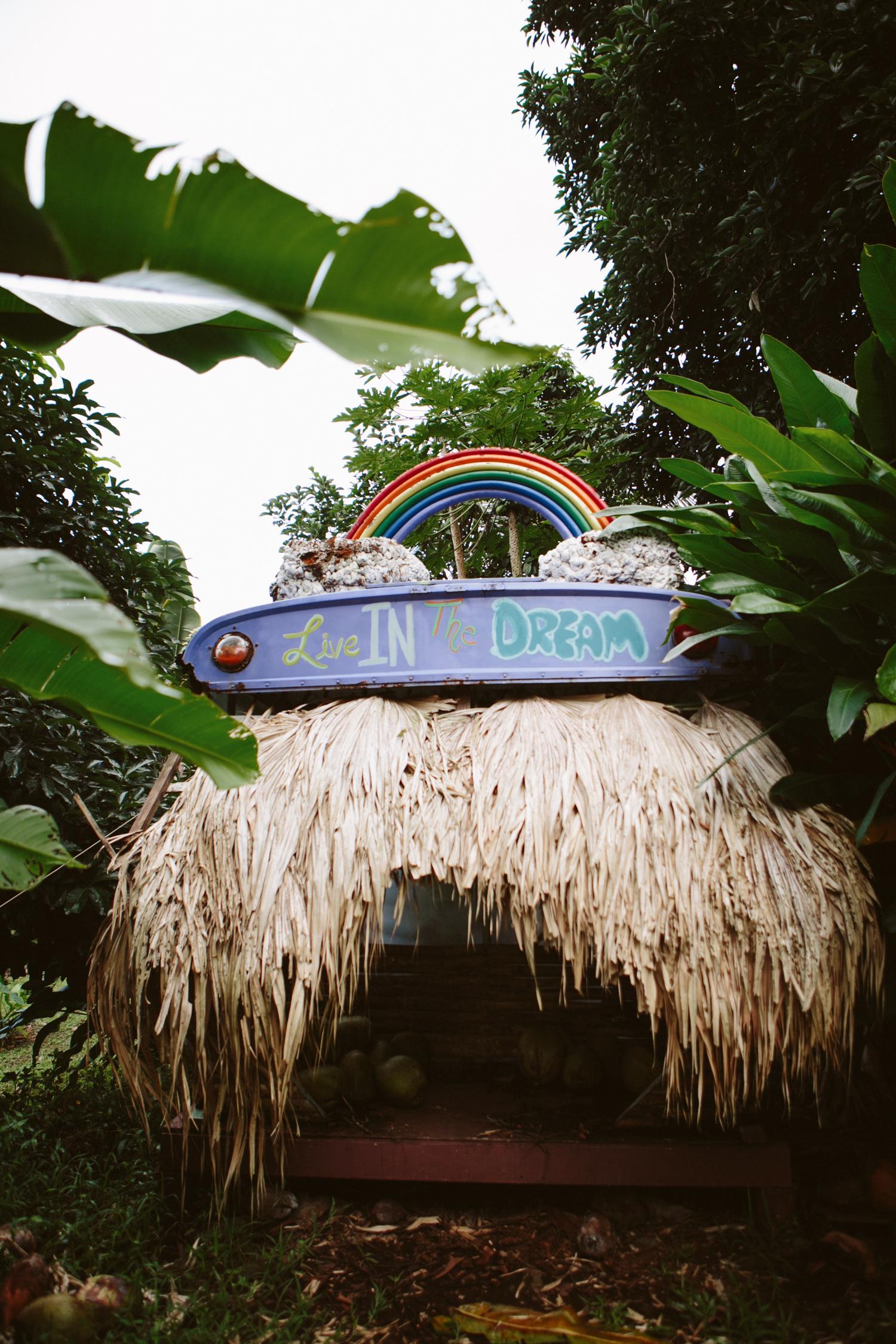 Maui Hawaii- Grace and Jaden Photography (39).jpg