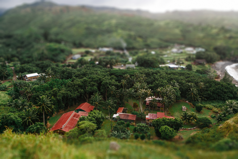 Maui Hawaii- Grace and Jaden Photography (47).jpg