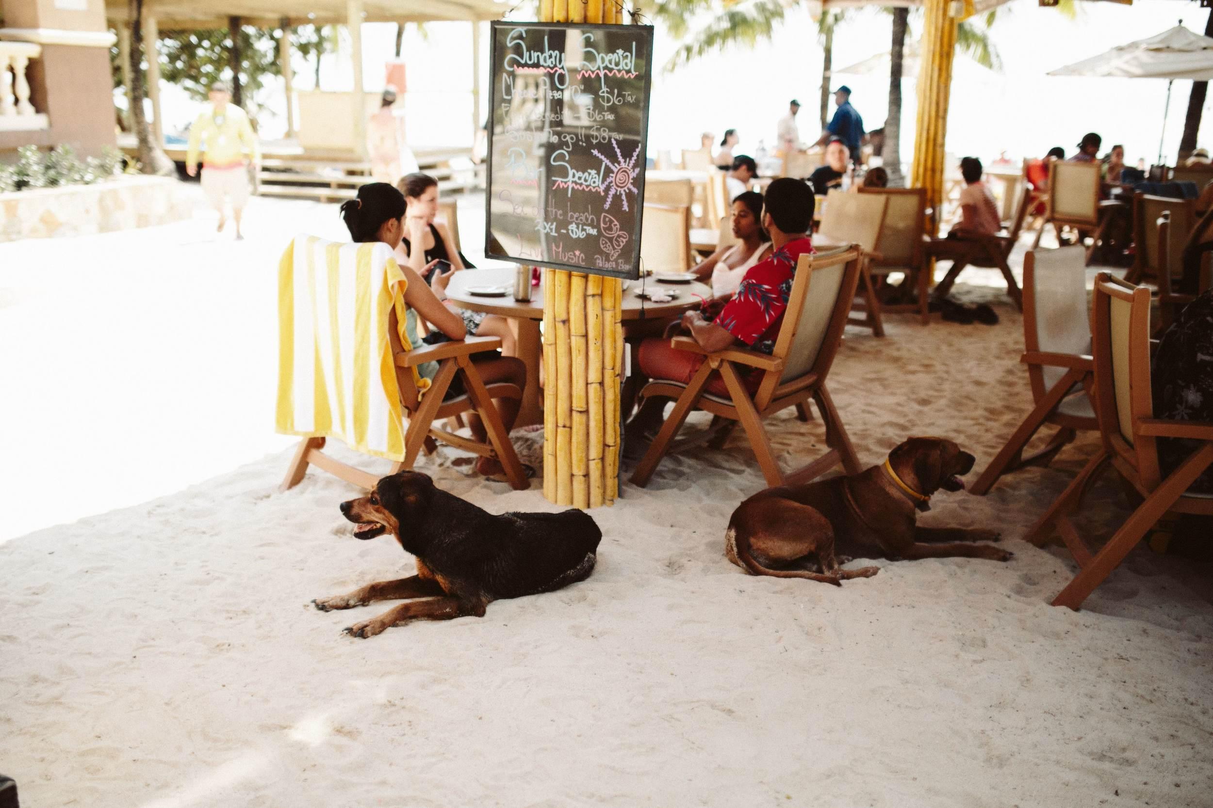 Roatan Honduras- Grace and Jaden Photography (14).jpg