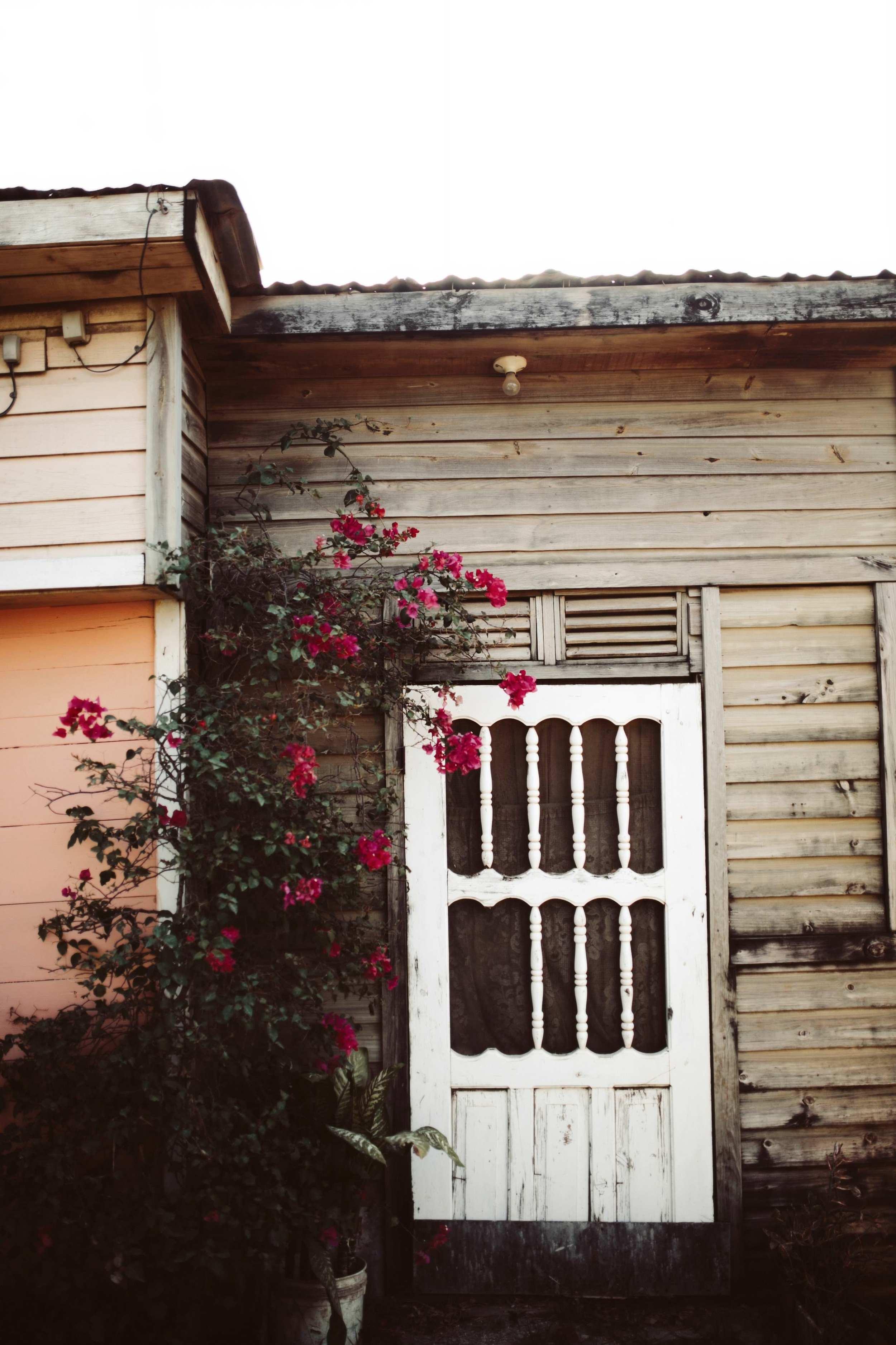 Roatan Honduras- Grace and Jaden Photography (60).jpg