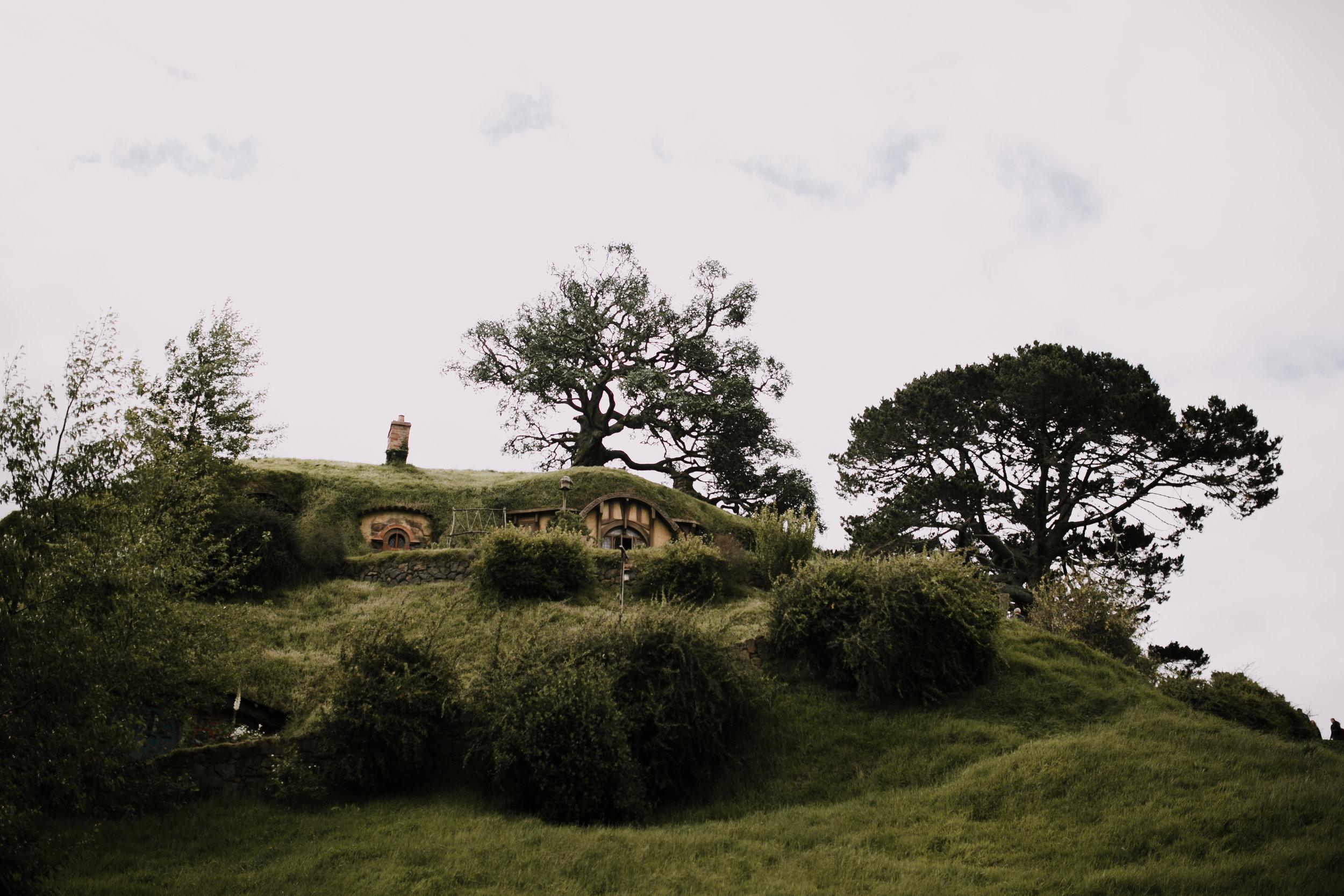 New Zealand- Grace and Jaden Photography (81).jpg