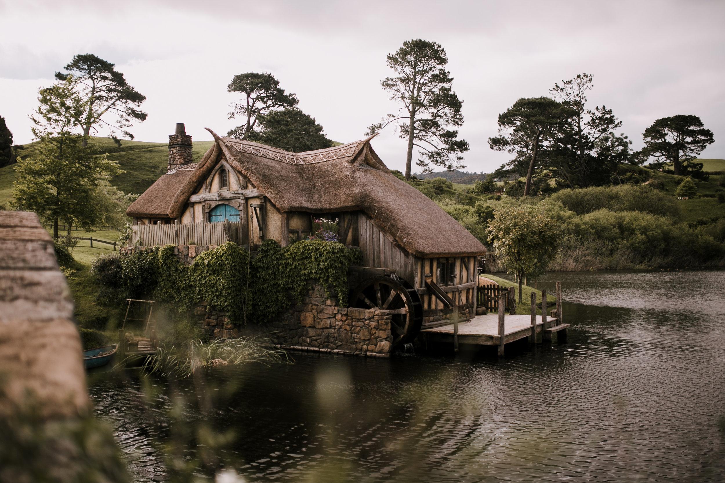 New Zealand- Grace and Jaden Photography (105).jpg