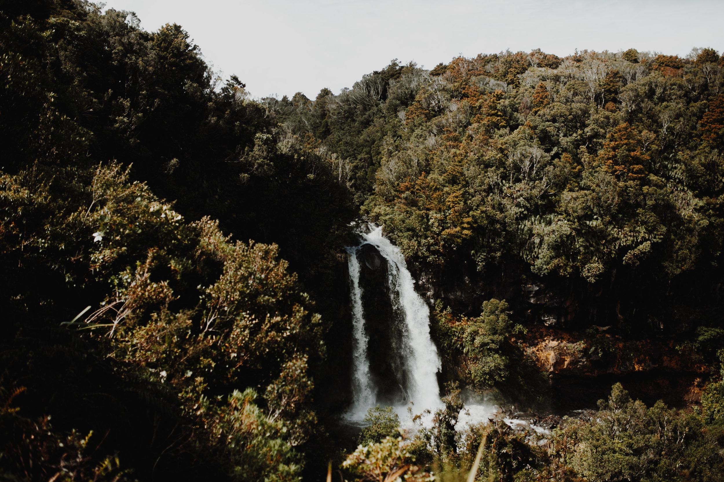 New Zealand- Grace and Jaden Photography (184).jpg