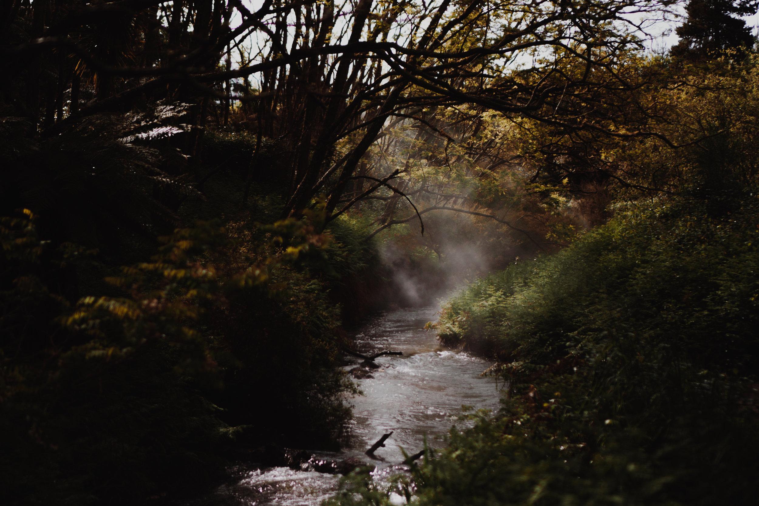 New Zealand- Grace and Jaden Photography (265).jpg