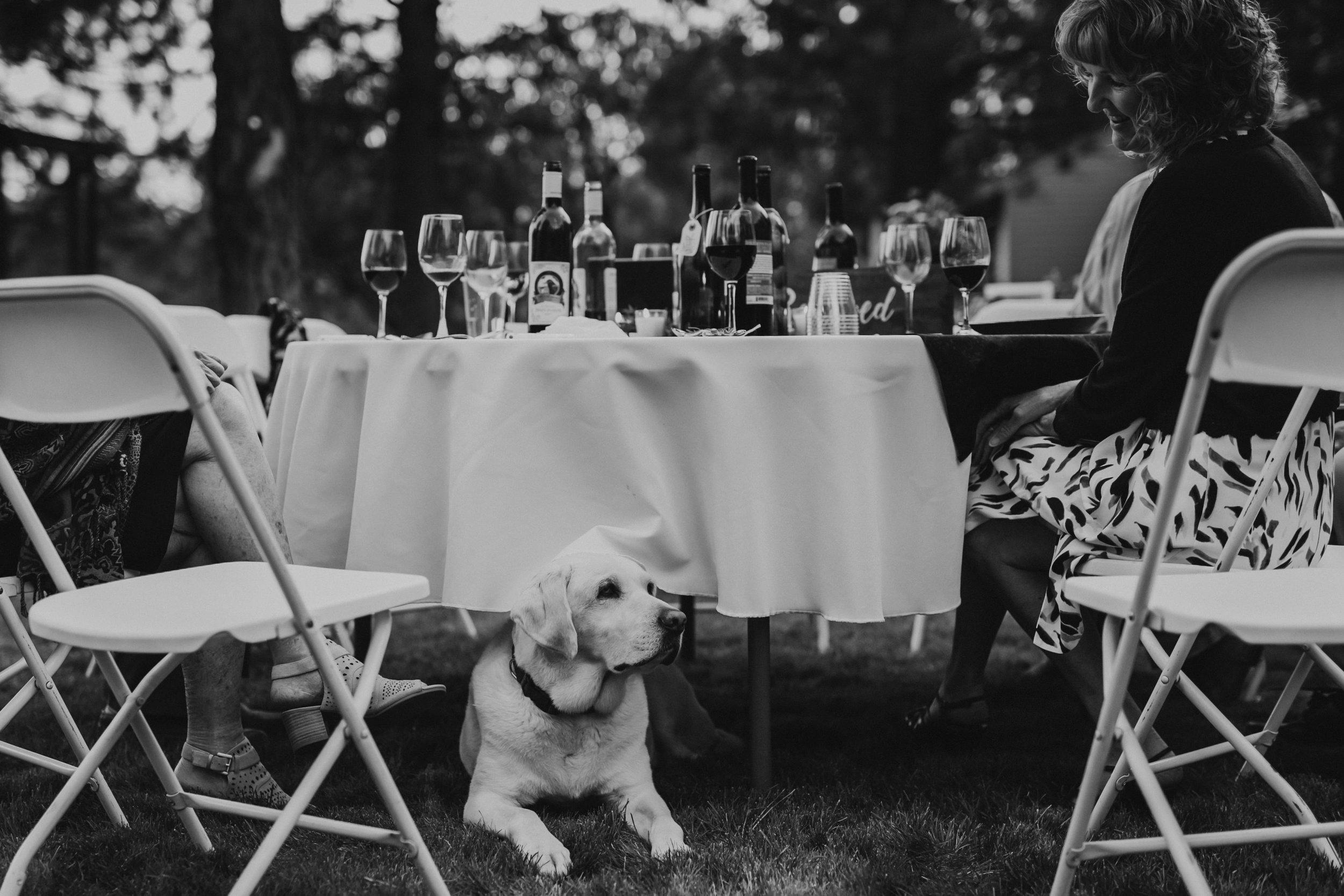 Grace and Jaden Photography- Portland Oregon Wedding Photographers- Destination Wedding (96).jpg