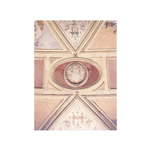when in rome ▫️▪️ look up  #rome #cieling #architecture #paintings #structure #details #mirror #softcolors #texture #castle #photography #contrast #light #shadows #emmeliefranzendesign