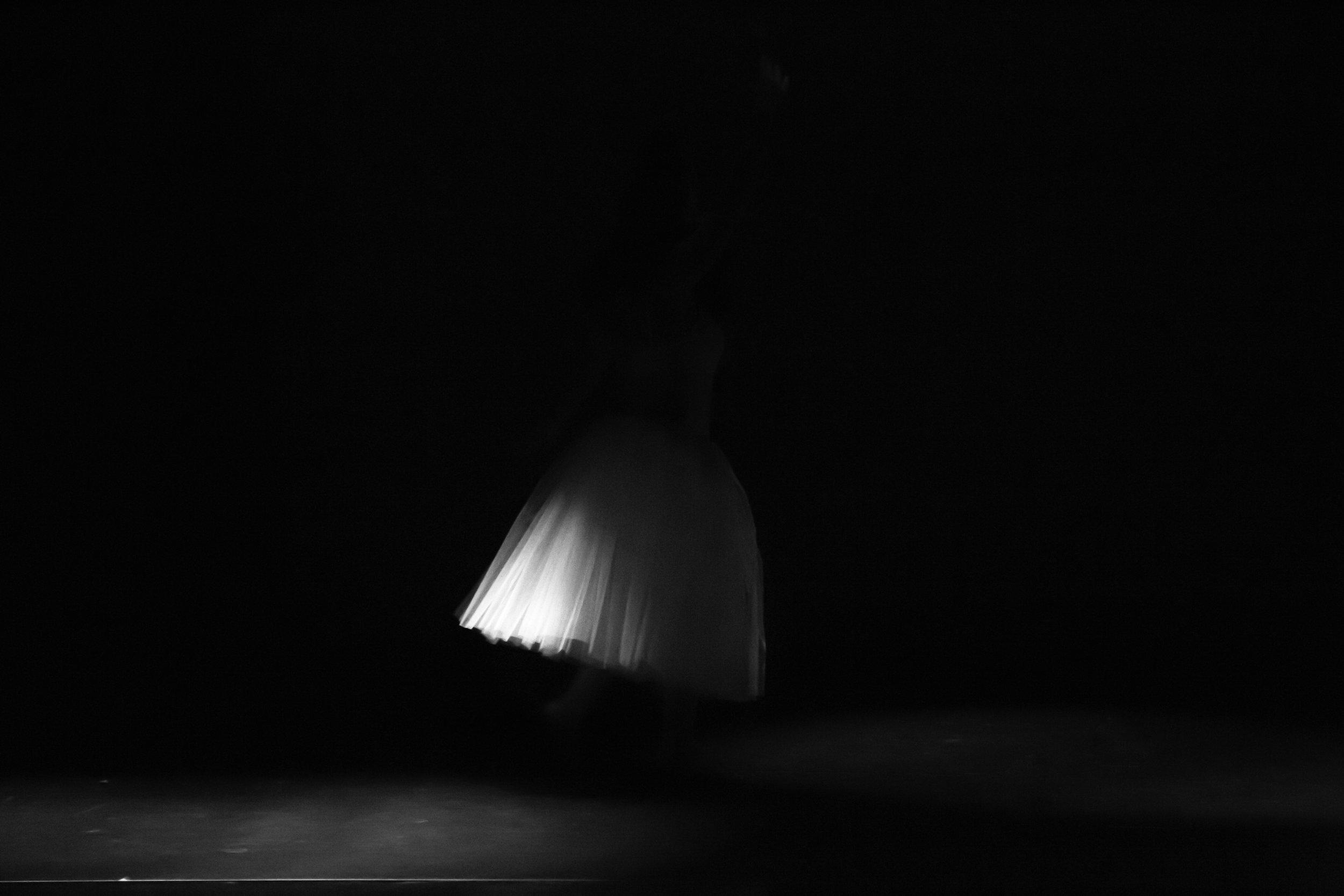 2016_danzac-5.jpg
